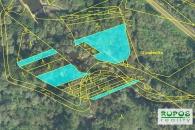 Prodej souboru lesních pozemků v  za 43424