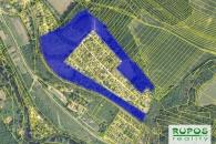 Lesní pozemek, 66.893 m2, Ivančice  v  za 750000